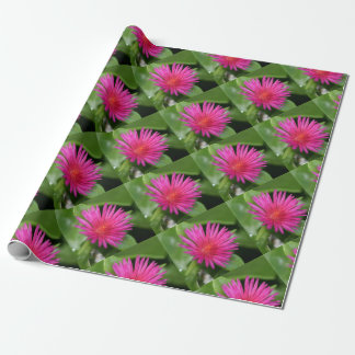 Pink Flower of Succulent Carpet Weed Wrapping Paper