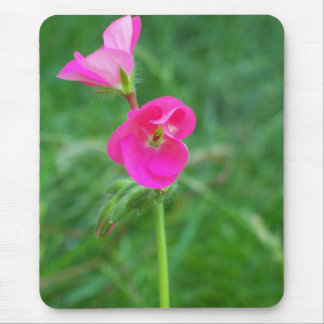 pink flower on a mouse pad