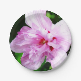 Pink Flower Paper Plates 7 Inch Paper Plate