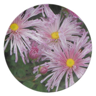 Pink Flower Photo Gift Party Plates