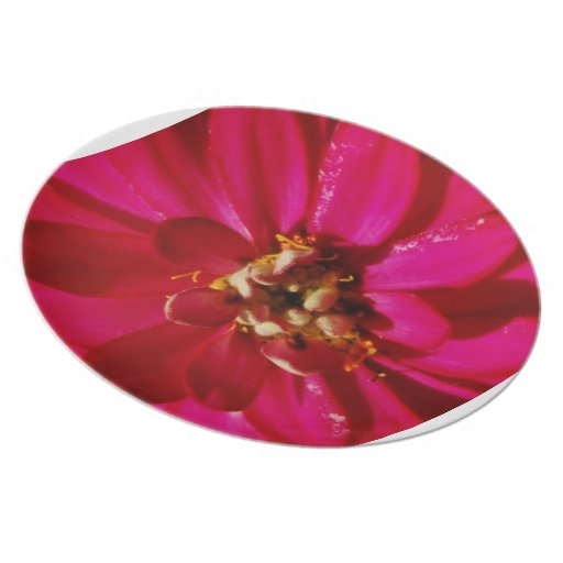 Pink Flower Plate