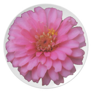 Pink Flower Plate - White
