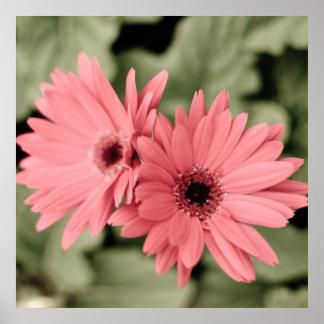 pink flower poster