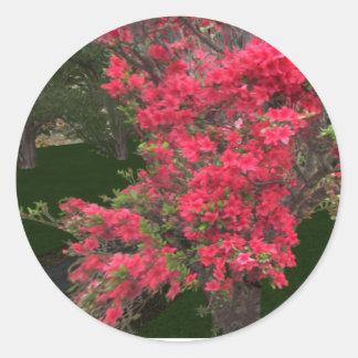 Pink flower tree sticker