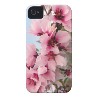 Pink Flowering Branch BlackBerry Bold Case-Mate iPhone 4 Case
