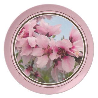 Pink Flowering Branch Plate