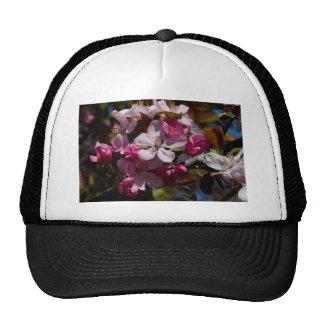 Pink Flowering Crabapple Blooms Hat