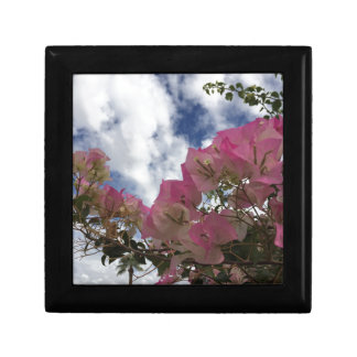 pink flowers against a blue sky gift box