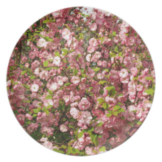 Pink flowers background plate