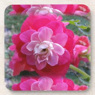 Pink Flowers Beverage Coaster