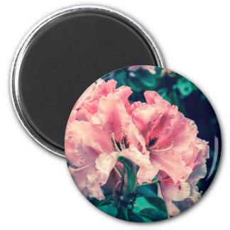 pink flowers crossprocess5 magnet