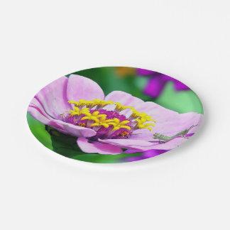 Pink Flowers Grasshopper Cute 7 Inch Paper Plate