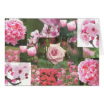 Pink Flowers Greeting Cards