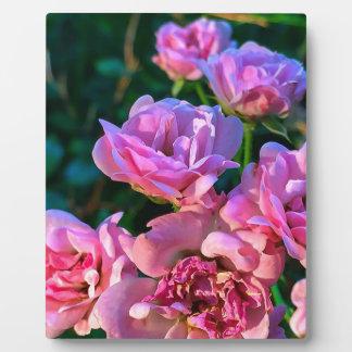 Pink_Flowers.JPG Plaques
