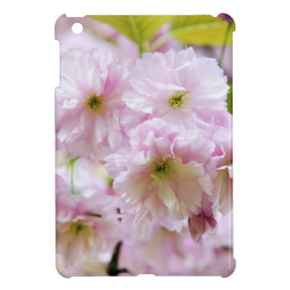 Pink flowers on Japanese cherry tree in city garde Cover For The iPad Mini
