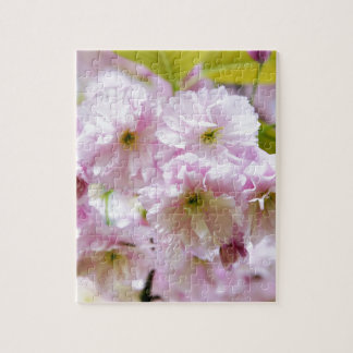 Pink flowers on Japanese cherry tree in city garde Jigsaw Puzzle