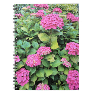 Pink Flowers Photo Notebook