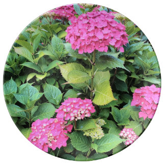 Pink  Flowers Photo Porcelain Plate
