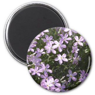 Pink Flox Flower Magnet   Floral Home Decor