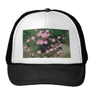 Pink Garden Cosmos (Cosmos Bipinnatus) flowers Mesh Hat