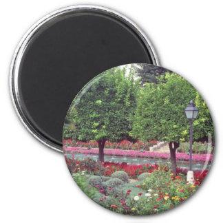 Pink Gardens of the Alcazar, Cordoba, Spain flower 6 Cm Round Magnet