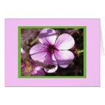 Pink Geranium Card