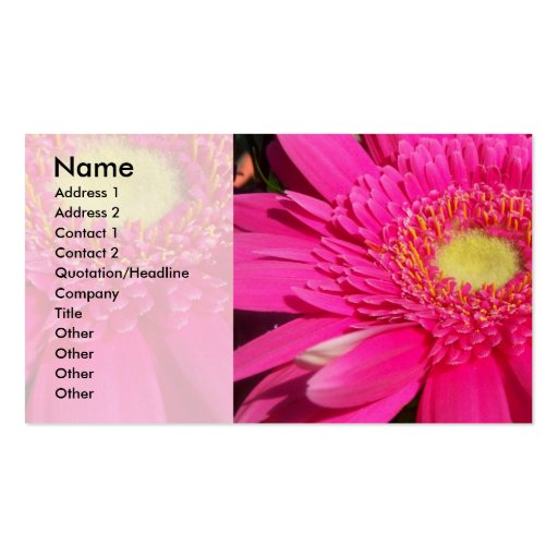 Pink Gerber Daisy Business Cards