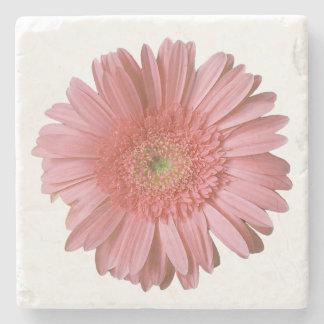 Pink Gerber Daisy Stone Coaster