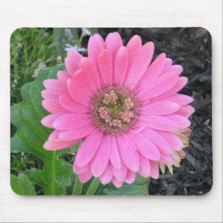 Pink Gerber Daisyy Mouse Mat