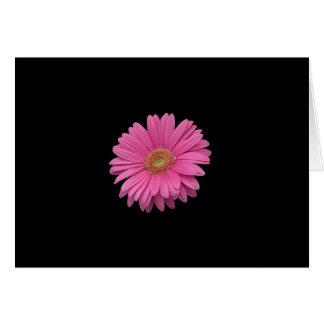 Pink Gerbera Daisy Card