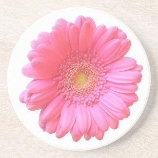 Pink gerbera daisy drink coasters