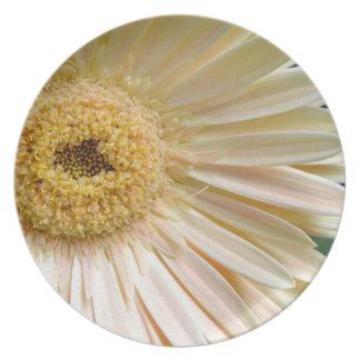 Pink Gerbera Daisy Flower Plate