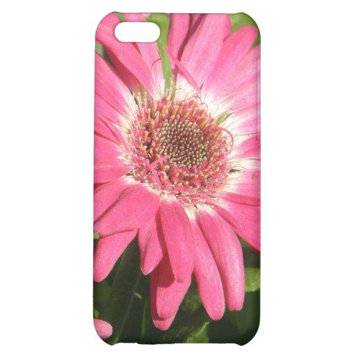 Pink Gerbera Daisy iPhone 5C Case