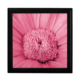 Pink Gerbera Daisy Large Square Gift Box