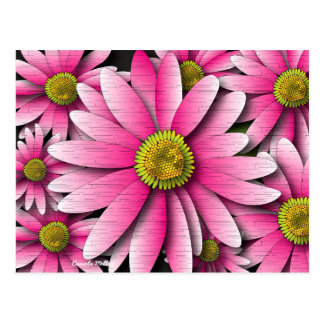 Pink Gerbera Daisy Postcard