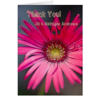 Pink Gerbera Flower Close-up Card