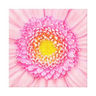 Pink Gerbera Flower Macro Abstract Nature Canvas Canvas Prints