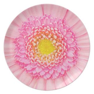 Pink Gerbera Flower Macro Abstract Nature Plate