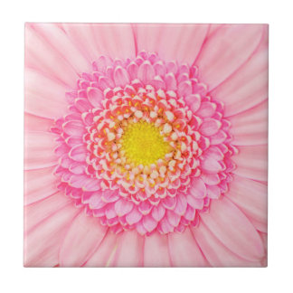 Pink Gerbera Flower Macro Abstract Nature Tile