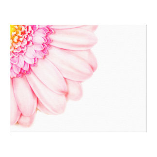 Pink Gerbera Flower Macro Nature Canvas Gallery Wrapped Canvas