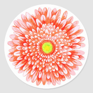 Pink Gerbera Small Round Matte Sticker