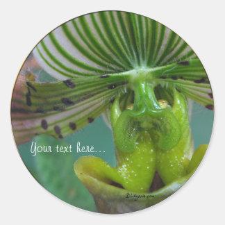 Pink Green Slipper Orchid Wedding Invitation Seals Round Sticker