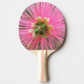 Pink Gum Tree Flower Ping Pong Paddle