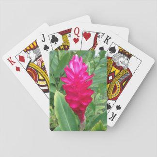 Pink Hawaii Poker Deck