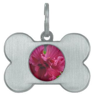 Pink Hibiscus, flourishing alder is gifta Pet Tag
