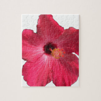 Pink Hibiscus Flower 201711e Jigsaw Puzzle
