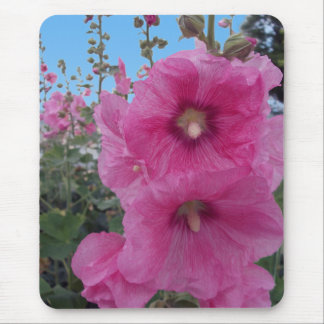 Pink Hibiscus Flowers Mousepad