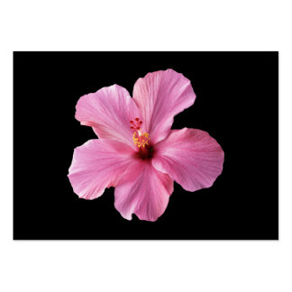 Pink Hibiscus Hawaii Flower Customized Template Pack Of Chubby Business Cards