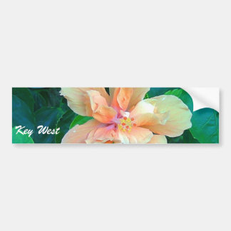 Pink Hibiscus, Key West Bumper Sticker