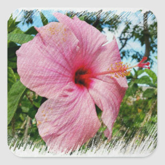 Pink Hibiscus Square Sticker